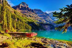 um barco na margem do lago