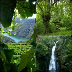 Vistas verde paisajes Galicia