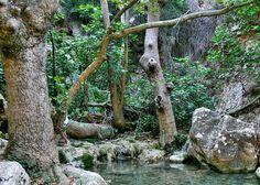 Waterfalls of Fonissa, Mylopotamos,Kythita Natural Beauty, Greece, Restoration, Island, Mansions, Country, Waterfalls, Beach, Nature