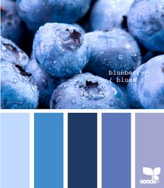 blueberry blues - who would have thought that monochromatic could be so fun and interesting?!