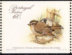 Rock Sparrow stamps - mainly images - gallery format