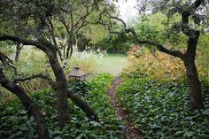 Casa Caruncho <br/> Temporal Cosmic Garden - Fernando Caruncho