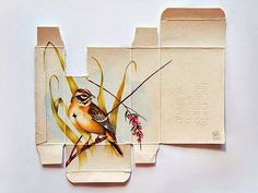 Sara Landeta creates beautiful ornithological drawing using only a medicine box as her canvas. I like the idea of this because it's unique, simple and magnificent.