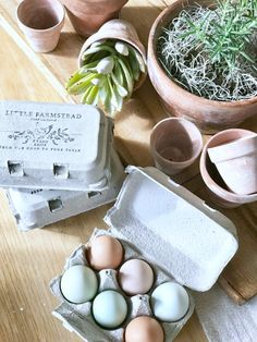 Little Farmstead: Farm Fresh Eggs & Custom Egg Carton Stamps. Homemade Stamps, Homestead House, Farmhouse Decor, Farmhouse Style, Coops, Easter Crafts, Granola, Easter Eggs, Fresh