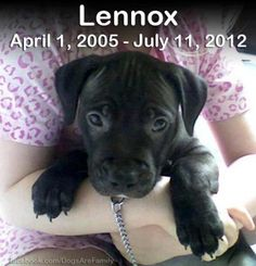 Never forget! END BSL!