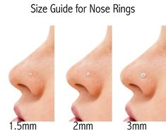AmazonSmile: Set of 2 Style Nose Rings: .925 Sterling Silver Gold Plated 1.25 mm CZ Stud and 9 mm Nose Hoop: Clothing