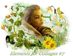 Design Wilds Cat: Элементы для коллажей #7 Elements for Collages #7