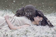 owl - Google zoeken