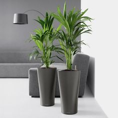 Have to have it. Round Lechuza Delta Self-Watering Indoor Planter - $129.99 @hayneedle.com