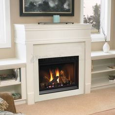 Share us with friends and family and get $5 off any purchase of $99 or more Napoleon 36 Clean Face Direct Vent Gas Fireplace-BGD36CF #northlineexpress