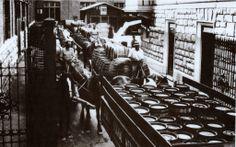 Vecchia Trieste: la fabbrica Stock di Roiano