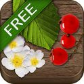 Android App How often does it happen that you're out in the wild and you discover berries, fruits, herbs, or nuts that you would like to eat or learn more about?