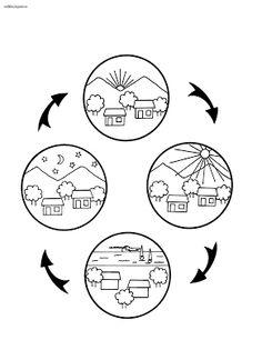 Nap ciklus