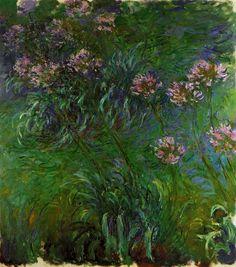 Agapanathus - Claude Monet
