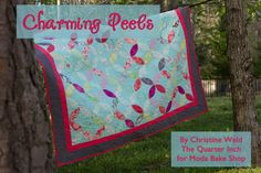 Charming Peels Cover Image with Text. Uses 2 charm packs, or 1/2 layer cake. Scrappy background fabric?