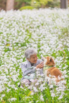 Japanese photographer Yasuto took a series of heartwarming and wholesome photos of his grandmother and her dog, a Shiba Inu. Shiba Inu, Siberian Husky Puppies, Husky Puppy, Siberian Huskies, Corgi Puppies, Equine Photography, Animal Photography, Portrait Photography, Portraits Illustrés