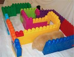 Playtime Ideas | Guinea Pig Fun