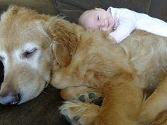 The Cutest Thing You'll See Today: 22 Kids and Their Big Dogs
