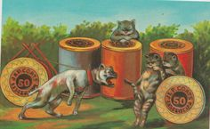 vintage J&P Coats Thread dog and cat postcard