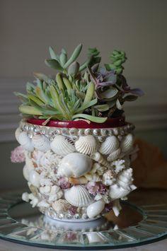 Shell garden pot | by luvmypups