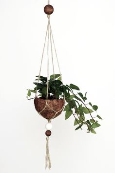 DIY Upcycling Kokosnuss-Makramee-Blumenampel