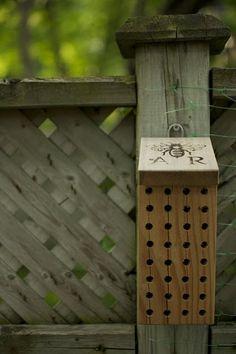 dollar store solar lights on plant hook love this backyard idea