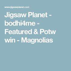 Jigsaw Planet - bodhi4me - Featured & Potw win - Magnolias