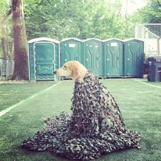 Maddie disguised as a tree.