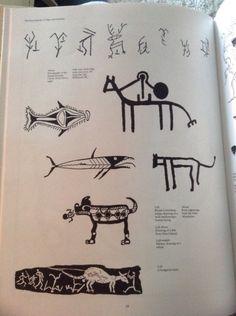 animal tums