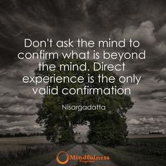 Don't ask the mind to confirm what is beyond the mind. Direct experience is the only valid confirmation. -Nisargadatta