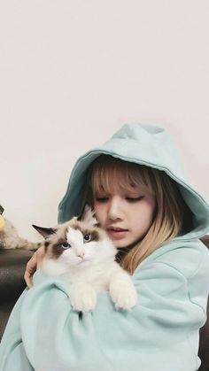 BlackPink LISA's cat Leo, In Blue…Cute photo updates – Black Pink Revolution