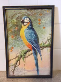Vintage Framed Watercolor Painting of Parrot Tree Moss Oranges- Under Glass #Realism