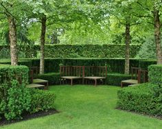 Surprising Good Trees For Privacy: Traditional Landscape Good Trees Formal Hedges Provide A Decorative Touch Or Privacy ~ gtrinity.com Design