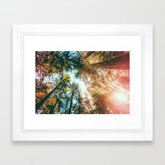 California Redwoods Sun-rays And Sky Framed Art Print by Elena Kulikova - Scoop Black - Framed Art Prints, Fine Art Prints, Canvas Prints, E Frame, Sky Art, Custom Art, Wall Tapestry, Sun Rays, California Coast