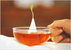 """Tea Forté is quite possibly the finest, most elegant """"tea bag"""" ever. The pyramid infuser filled with whole-leaf tea and rough-cut herbs delivers superior flavor with a beautiful visual presentation."""