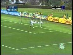 Reinaldo Midfielder / Volante - Parte 2