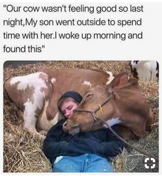 Animal Memes Memes That Are So Freaking Funny Pictures) - Page 2 of 2 - LADnow animals animal dog animaux Animal Jokes, Funny Animal Memes, Funny Animal Pictures, Funny Pictures Of People, Animal Pictures For Kids, Happy Pictures, Cute Little Animals, Cute Funny Animals, Funny Cute
