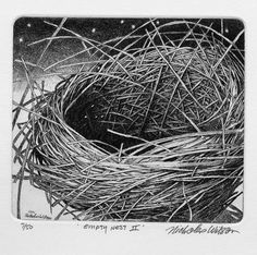 Nicholas Wilson Etching of Nest EMPTY NEST II by tjstortuga, $65.00