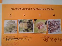 Castanhas Fall Crafts, Diy And Crafts, Diy For Kids, 1, Student, School, Cover, Books, Cristina