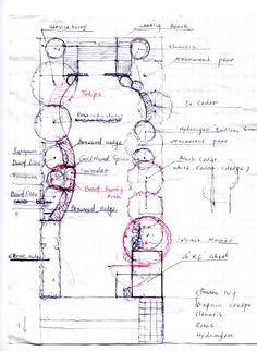Backyard plan for a narrow lot.