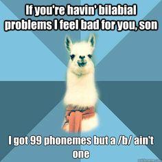 Linguist Llama!