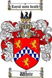 White coat of arms / white family crest www.4crests.com #coatofarms #familycrest…