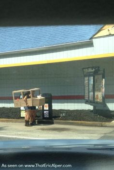 No car? Hungry? Don't let that stop you. These guys didn't.