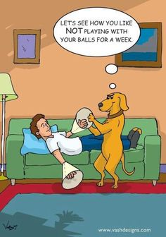 Funny Cartoon Jokes for Adults Funny Cartoon Pictures, Cartoon Jokes, Funny Cartoons, Funny Comics, Adult Cartoons, Funniest Pictures, Hilarious Pictures, Dog Pictures, Funny Images