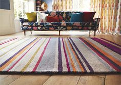 floors  - big rugs - joss & main