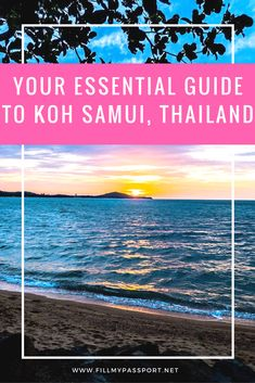 Koh Samui is a beautiful spot and very popular with travellers. Here is our guide showing you what to do while there. See a ladyboy show, shop the markets, relax at the beach, and enjoy authentic cuisine. #thailandtravel #kohsamui #thailandislands #scubakingdom #thailandtourism