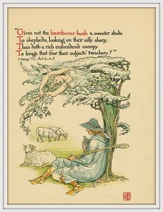 1906 Flowers from Shakespeare's Garden - Gives not the hathorne-bush a sweeter shade to shepherds, looking at their silly sheep, than ., pictured by Walter Crane - Illustration for book Hawthorn Bush, Walter Crane, Fine Art Prints, Canvas Prints, Wood Engraving, Children's Book Illustration, Book Illustrations, Shakespeare, Gifts In A Mug
