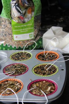 Home made vetbollen – One Life Live It Homemade Bird Feeders, Diy Bird Feeder, Craft Projects For Kids, Diy For Kids, Garden Animals, Outdoor Garden Decor, Winter Cabin, Backyard Lighting, Nature Crafts