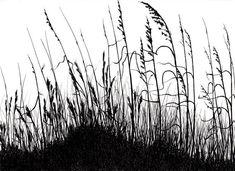 Botanical greeting cards- grasses drawing printed on linen paper- original art cards botanical greet