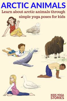 Learn about arctic animals through simple yoga poses for kids! Post includes 11 arctic animals yoga poses + purchase our Arctic Animals Yoga Cards for Kids. Kids Yoga Poses, Easy Yoga Poses, Yoga For Kids, Exercise For Kids, Children Poses, Kundalini Yoga Poses, Preschool Yoga, Printable Poster, Artic Animals